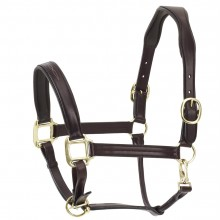 Ovation® ATS Fancy Stitch Padded Halter